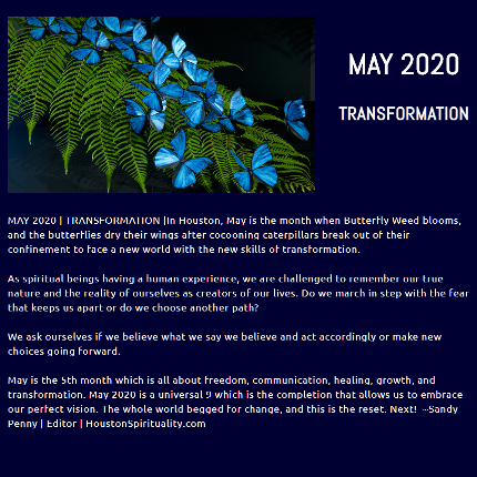 Transformation by Sandy Penny May 2020