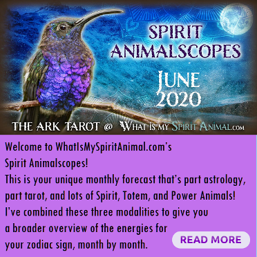 Spirit Animalscopes for June 2020 Hummingbird