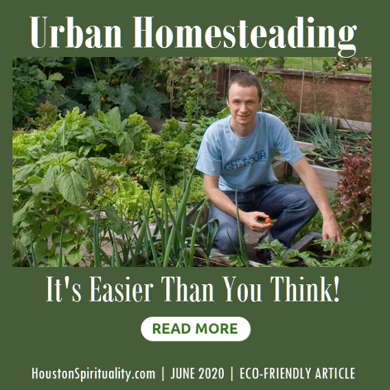 Urban Homesteading, It's easier than you think.