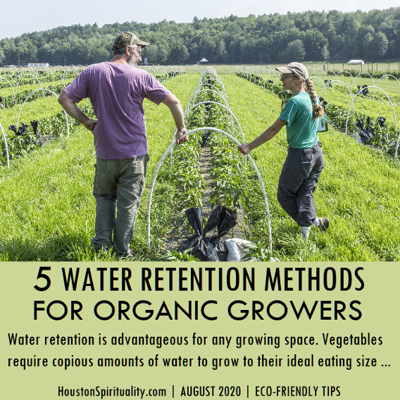 5 Water retention methods for organic growers.