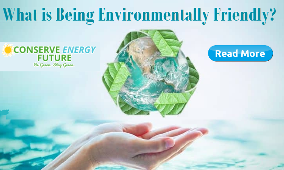 What is Being Environmentally Friendly?