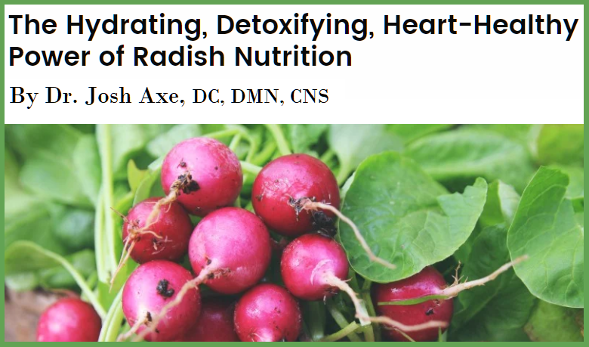 The Hydrating, Detoxifying, Heart-Healthy Power of Radishes by Dr. Axe