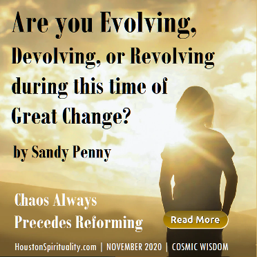 Are You Evolving, Devolving or Revolving by Sandy Penny