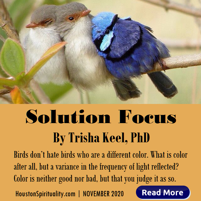 Solution Focus by Trisha Keel, PhD Nov 2020 HSM