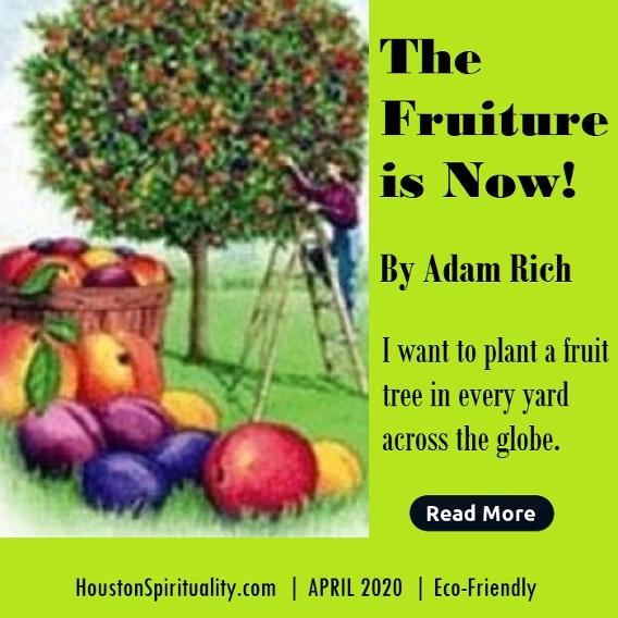 The Fruiture is Now! Planting food trees around the world.