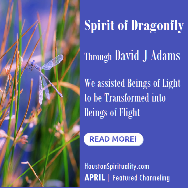 Spirit of Dragonfly, a channeling by David J Adams HSM April