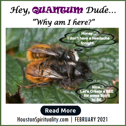 Hey Quantum Dude, Why am I here? by David Allison L/E