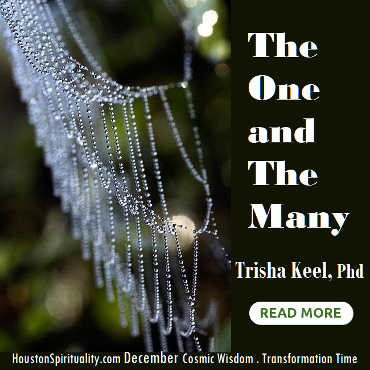 The One and The Many by Trisha Keel. Dec Cosmic Wisdom. HSM Transformation Time