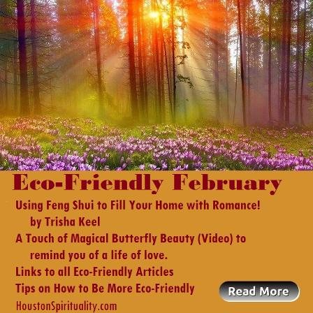 February Eco-Friendly Articles. Houston Spirituality Magazine.