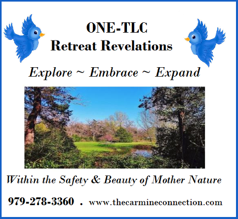 Retreat Revelations. Explore. Experience. Expand in the safety of mother nature. Oneness Now Energy
