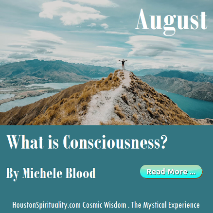 What is Consciousness? by Michele Blood