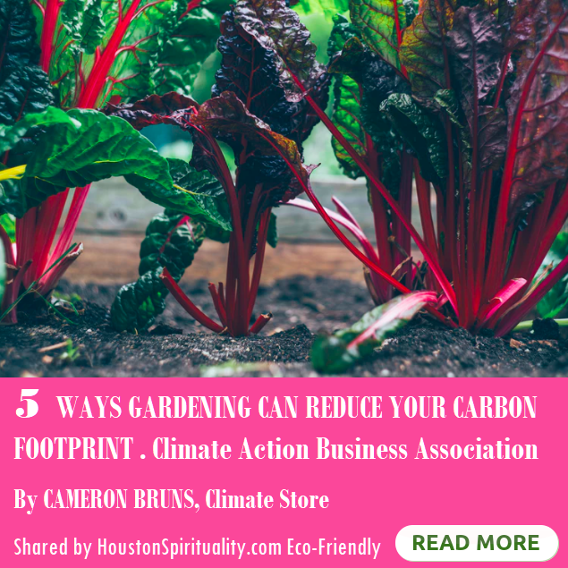 5 Ways Gardening Can Reduce Your Carbon Footprint. Climate Action Business Assocation. HSM