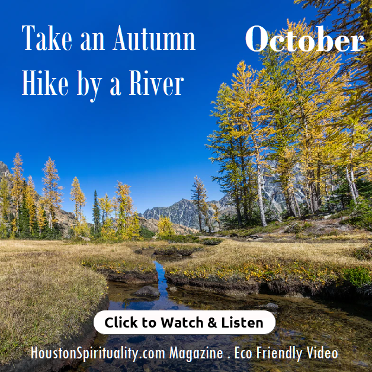 Take an Autumn Hike by a River Video. Watch & Listen.  HSM Eco Friendly October