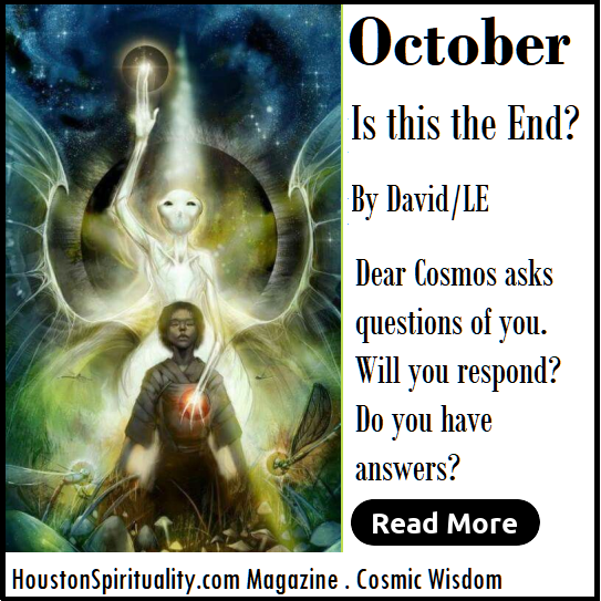 Dear Cosmos, Is this the end? by David/LE