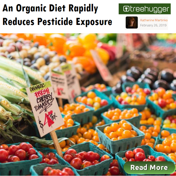 An Organic Diet Rapidly Reduces Pesticide Exposure, Healthy Food, Houston Spirituality Mag