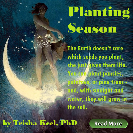 Planting Season. by Trisha Keel. Transformation Time. HoustonSpirituality.com