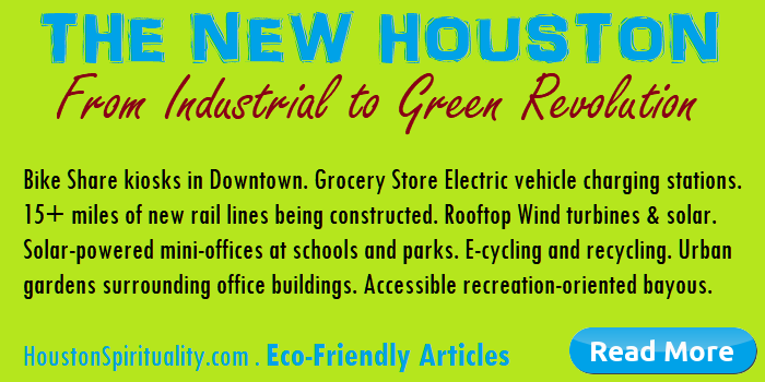 The New Houston. From Industrial to Green revolution.