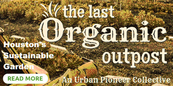 The Last Organic Outpost. Houston's Sustainable Garden