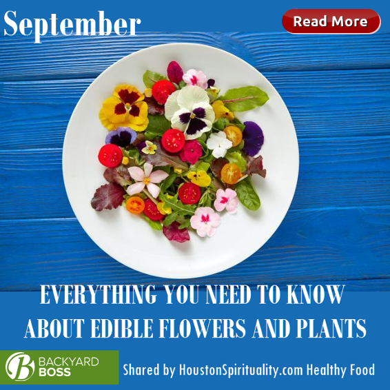 Everything You Need to Know about edible flowers and plants. Back Yard Boss