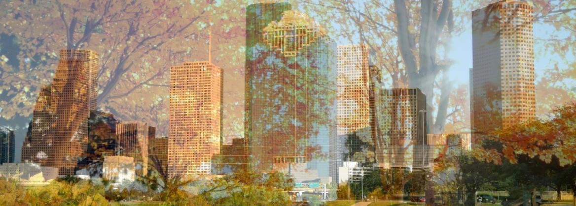 Houston Skyline superimposed on a Galveston Scene