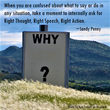 Right Thought Right Speech Right Action meme