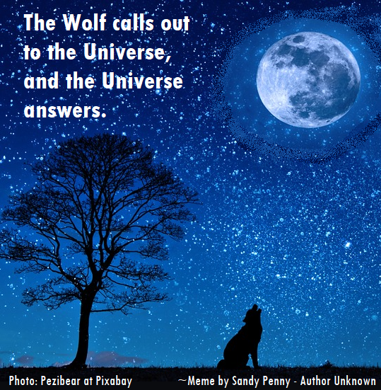 The wolf calls out to the universe