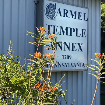 Carmel Temple Annex and Carmel info link