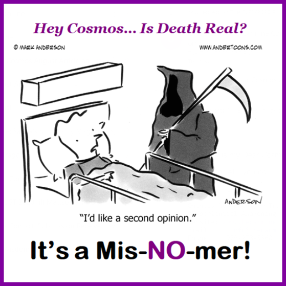 Dear Cosmos Cartoon. Is Death Real?