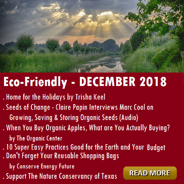 Eco-Friendly Articles for DECEMBER Houston Spirituality Mag