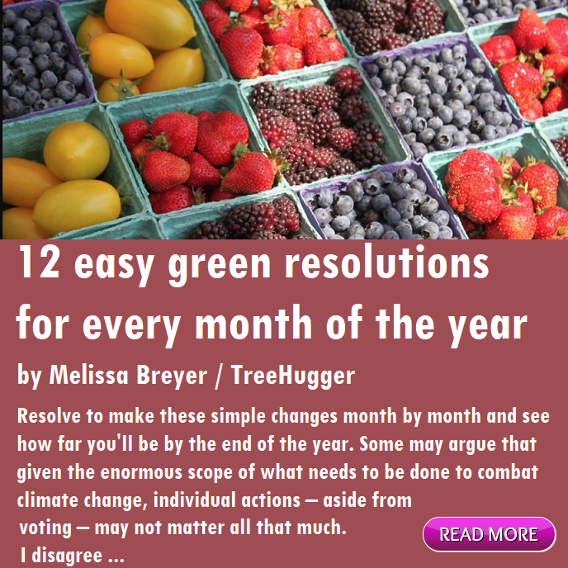 12 easy green resolutions for every month of the year