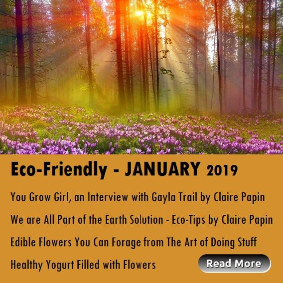 Eco-Friendly January 2019 articles