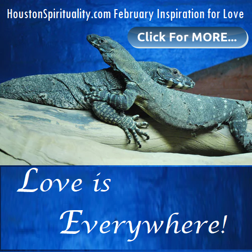 Feb Inspiration for Love/Life, memes, motivation, spirituality, metaphysics. HoustonSpirituality.com
