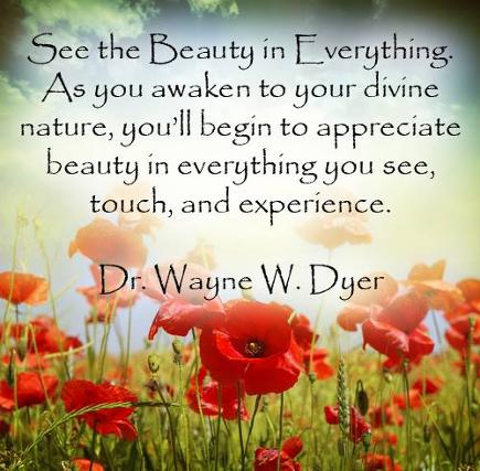See the Beauty in Everything. Dr. Wayne W. Dyer meme and quotes book link