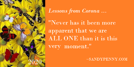 Lessons from Corona Sandy Penny