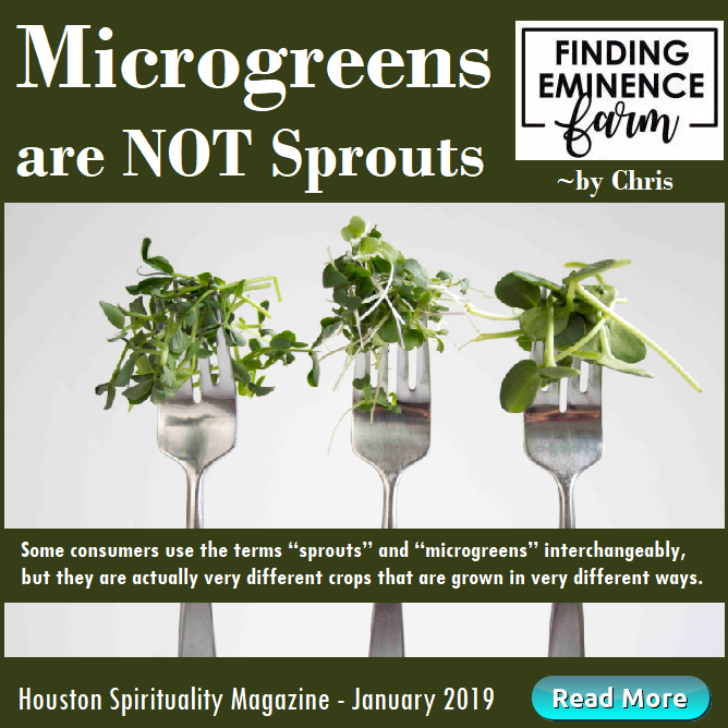 Microgreens are NOT Sprouts Jan HSM