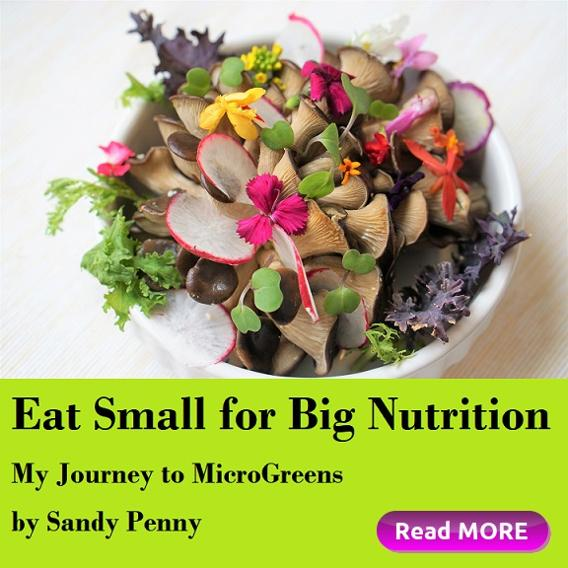 Eat Small for Big Nutrition, My Journey to MicroGreens by Sandy Penny, Houston Spirituality Healthy Food January