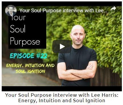 Your Soul Purpose by Lee Harris