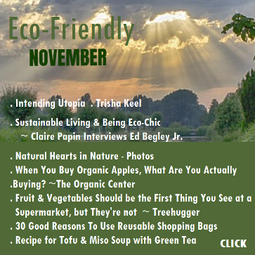 Eco-Friendly NOVEMBER